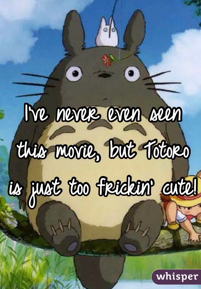 I've never even seen this movie, but Totoro is just too frickin' cute!