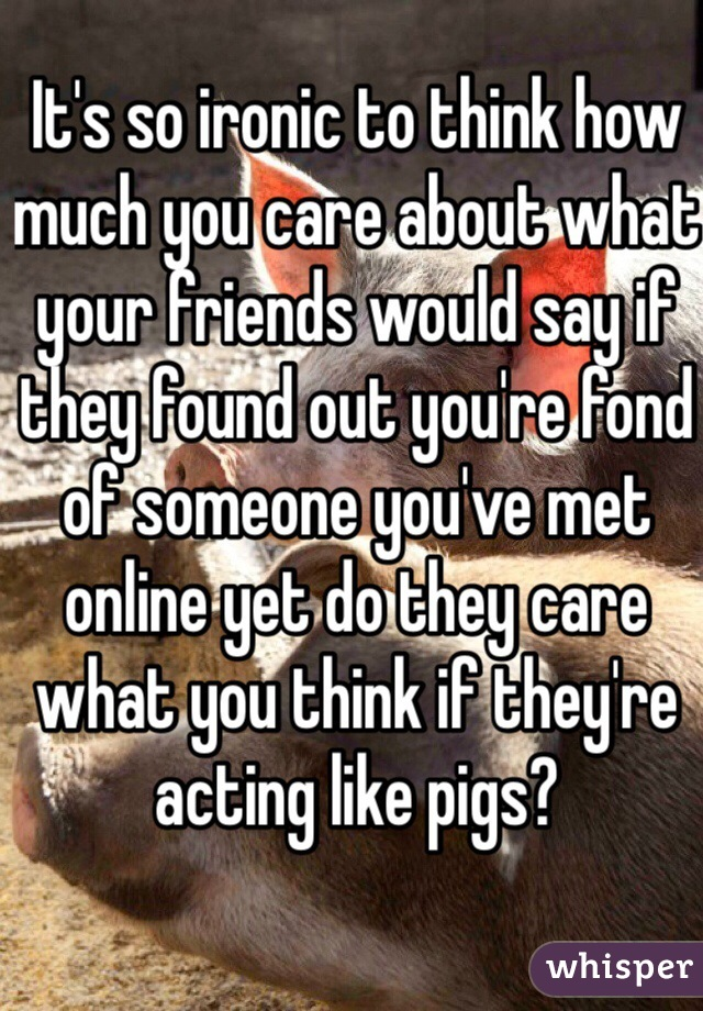 It's so ironic to think how much you care about what your friends would say if they found out you're fond of someone you've met online yet do they care what you think if they're acting like pigs?