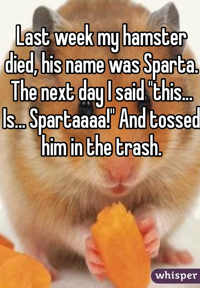 """Last week my hamster died, his name was Sparta. The next day I said """"this... Is... Spartaaaa!"""" And tossed him in the trash."""