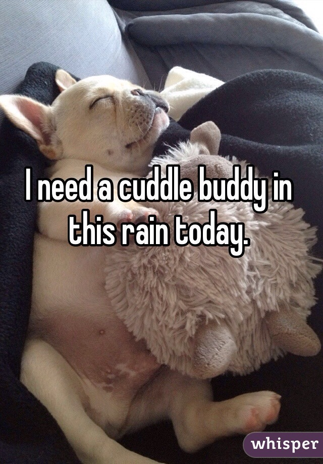 I need a cuddle buddy in this rain today.