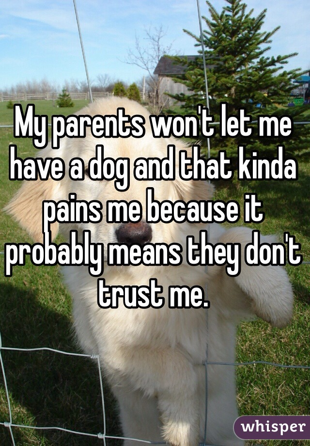 My parents won't let me have a dog and that kinda pains me because it probably means they don't trust me.