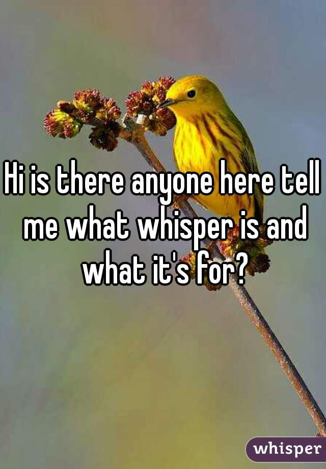 Hi is there anyone here tell me what whisper is and what it's for?