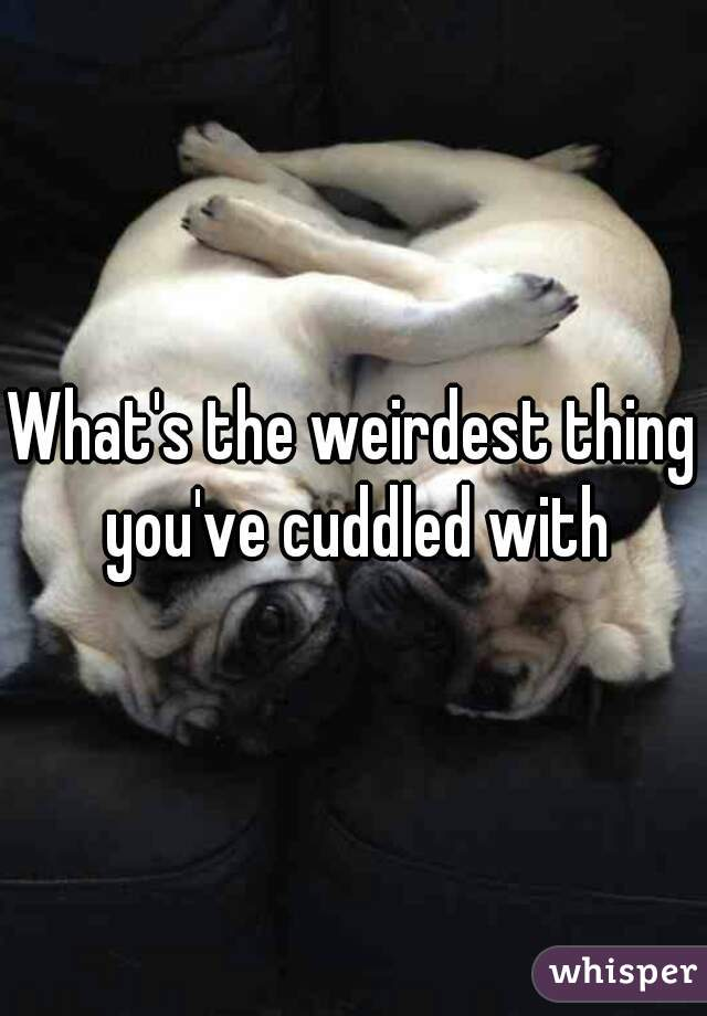 What's the weirdest thing you've cuddled with