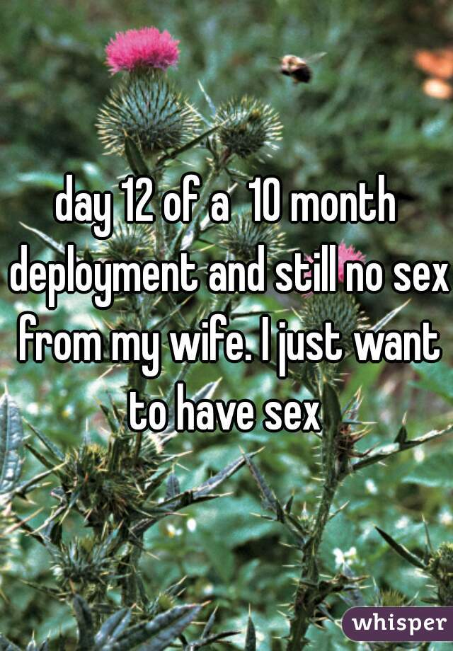 day 12 of a  10 month deployment and still no sex from my wife. I just want to have sex