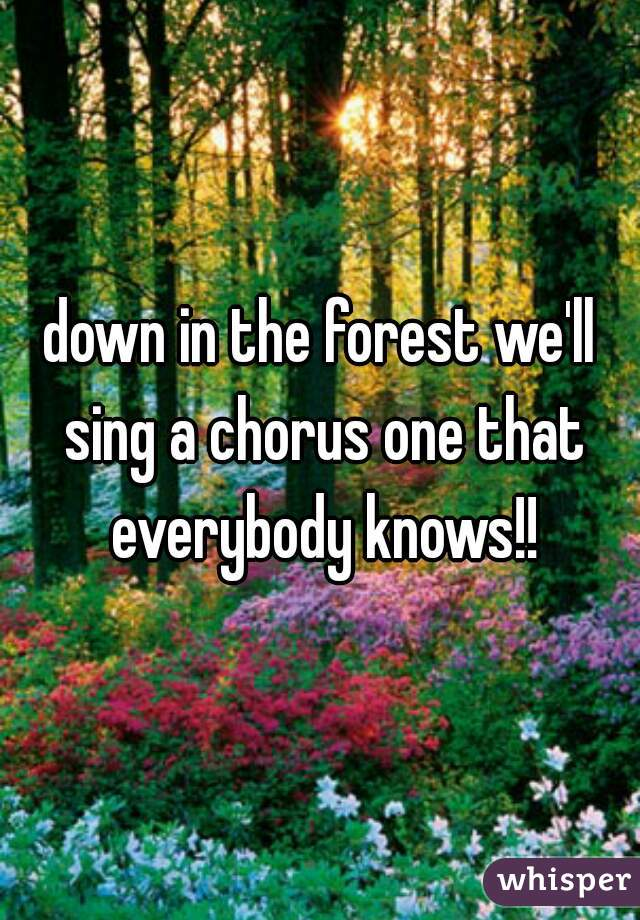 down in the forest we'll sing a chorus one that everybody knows!!