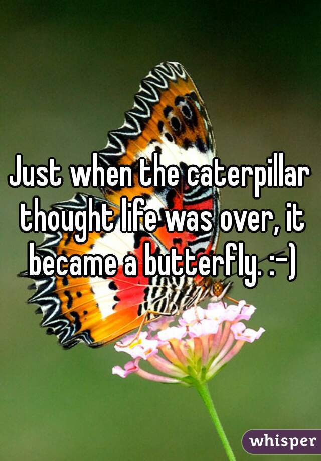 Just when the caterpillar thought life was over, it became a butterfly. :-)