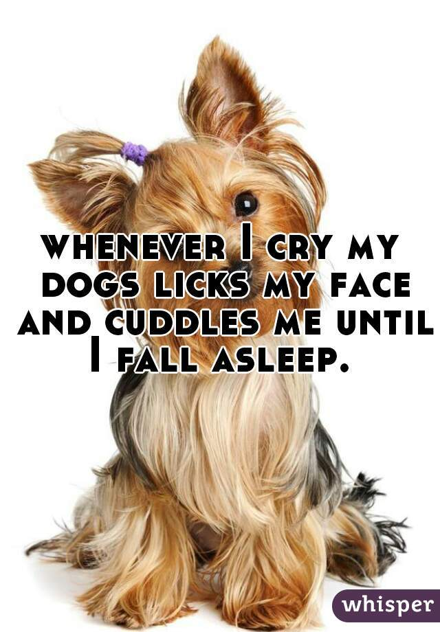 whenever I cry my dogs licks my face and cuddles me until I fall asleep.