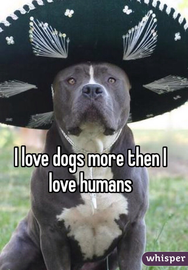 I love dogs more then I love humans