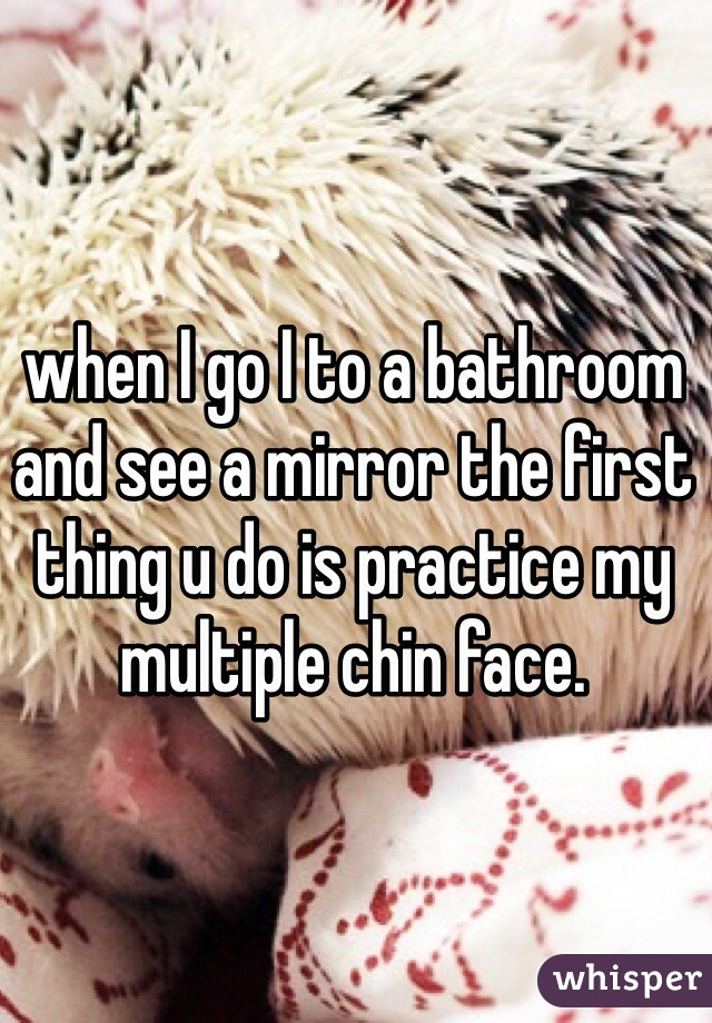 when I go I to a bathroom and see a mirror the first thing u do is practice my multiple chin face.