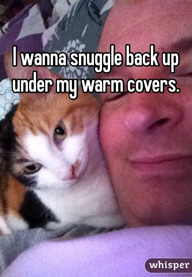 I wanna snuggle back up under my warm covers.