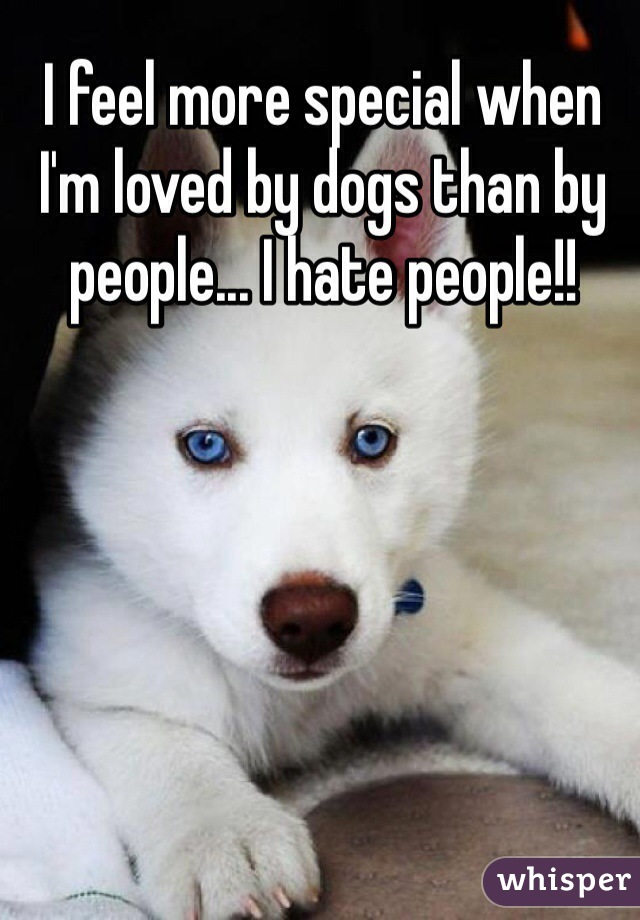 I feel more special when I'm loved by dogs than by people... I hate people!!