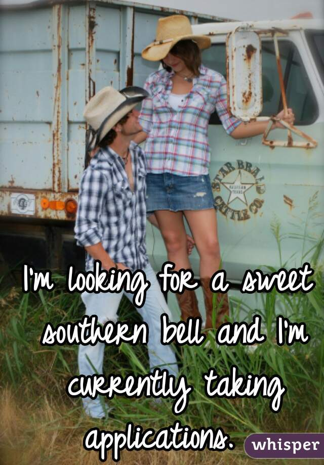 I'm looking for a sweet southern bell and I'm currently taking applications.