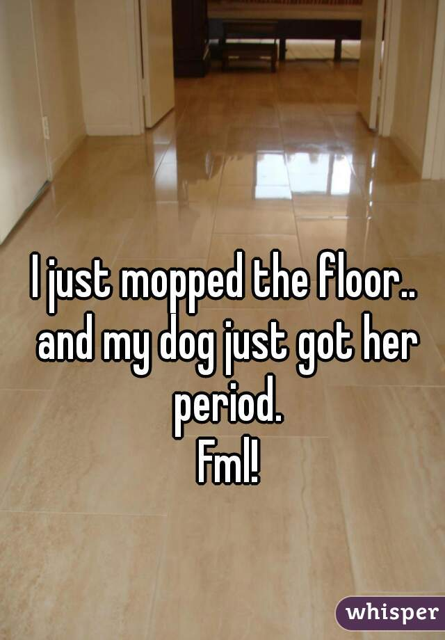 I just mopped the floor..   and my dog just got her period.   Fml!