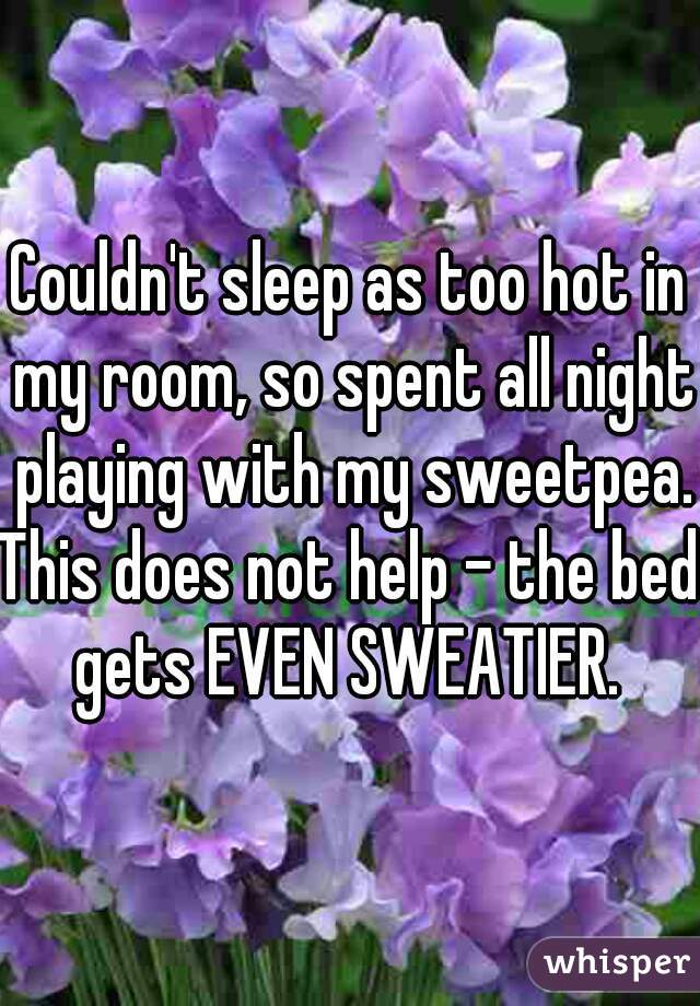 Couldn't sleep as too hot in my room, so spent all night playing with my sweetpea.  This does not help - the bed gets EVEN SWEATIER.