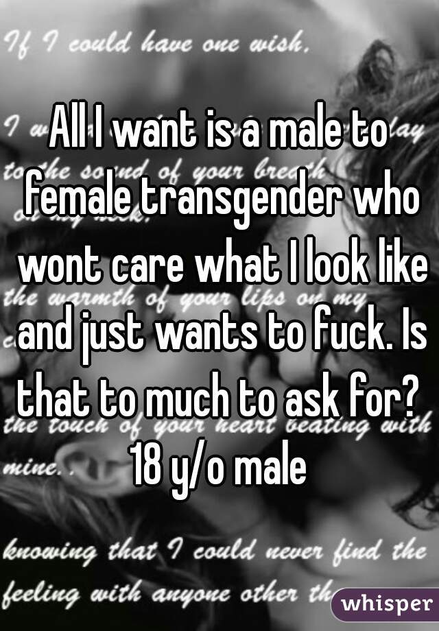 All I want is a male to female transgender who wont care what I look like and just wants to fuck. Is that to much to ask for?  18 y/o male