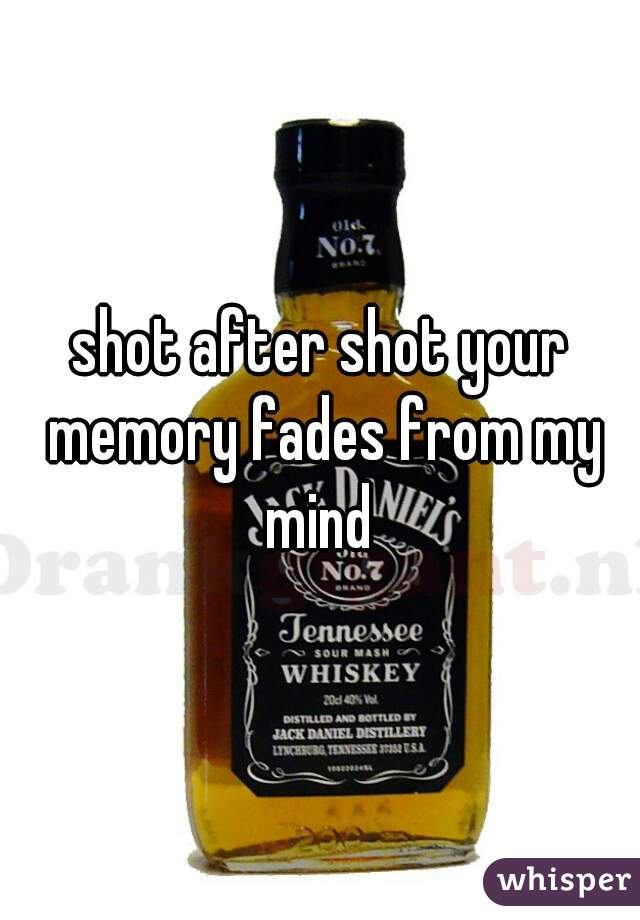 shot after shot your memory fades from my mind
