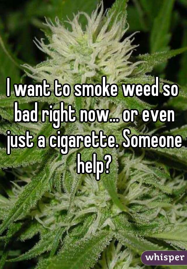 I want to smoke weed so bad right now... or even just a cigarette. Someone help?