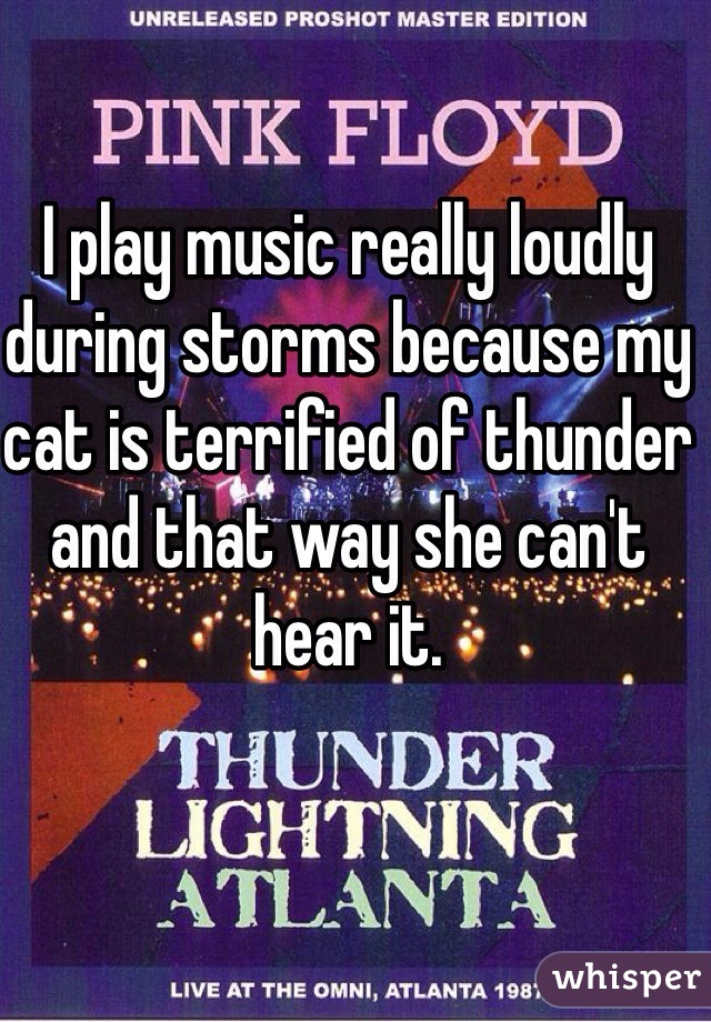 I play music really loudly during storms because my cat is terrified of thunder and that way she can't hear it.