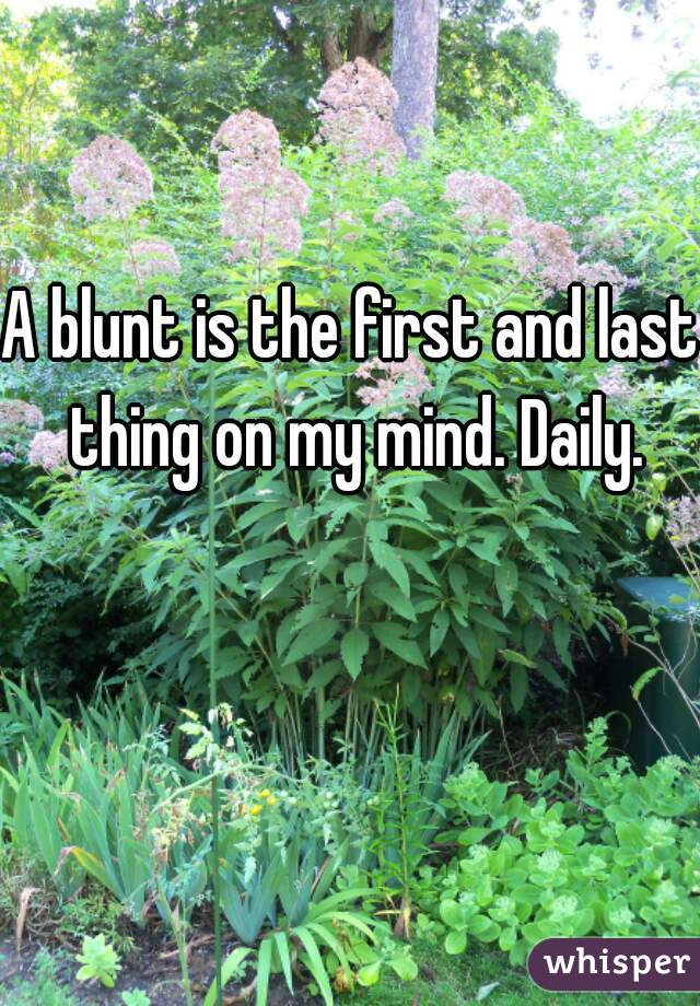 A blunt is the first and last thing on my mind. Daily.