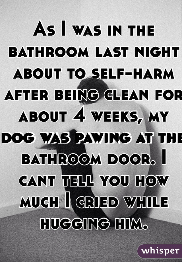 As I was in the bathroom last night about to self-harm after being clean for about 4 weeks, my dog was pawing at the bathroom door. I cant tell you how much I cried while hugging him.