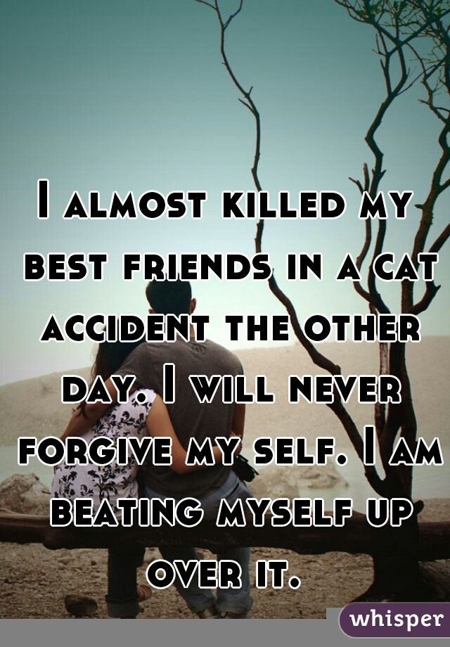 I almost killed my best friends in a cat accident the other day. I will never forgive my self. I am beating myself up over it.