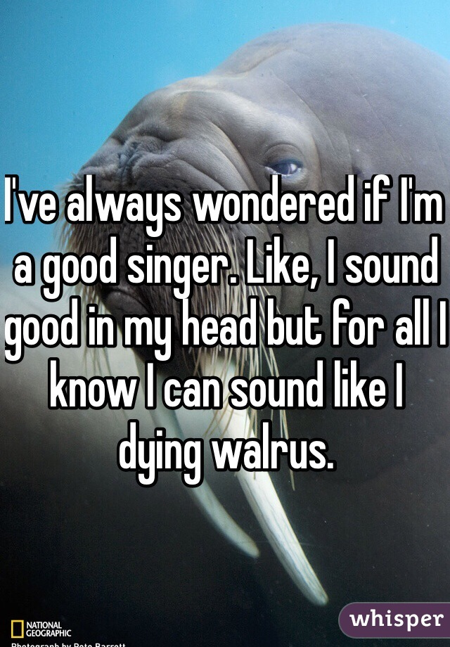 I've always wondered if I'm a good singer. Like, I sound good in my head but for all I know I can sound like I dying walrus.