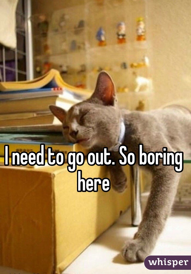 I need to go out. So boring here