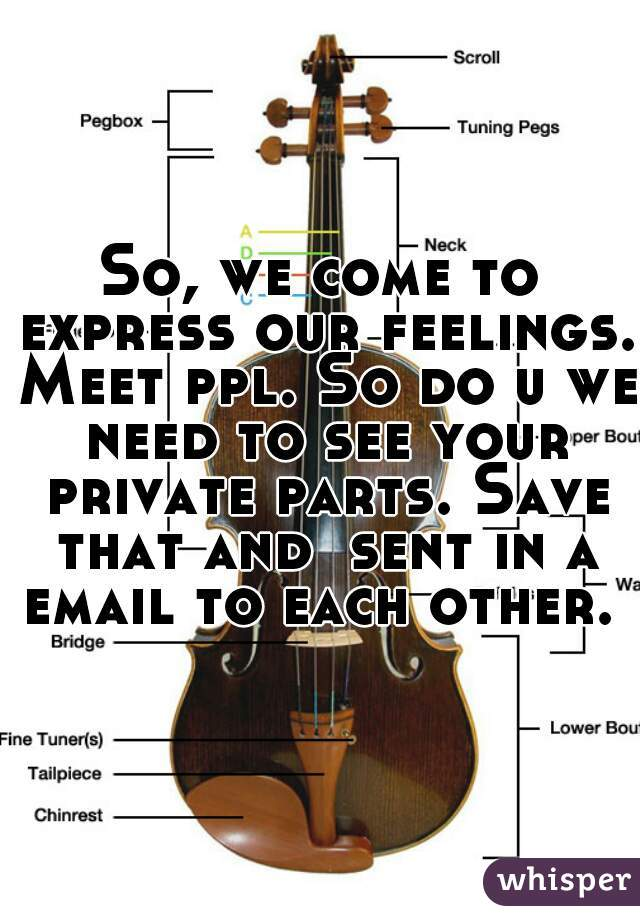 So, we come to express our feelings. Meet ppl. So do u we need to see your private parts. Save that and  sent in a email to each other.