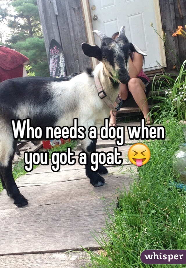 Who needs a dog when you got a goat 😝