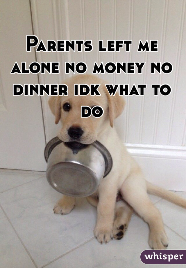 Parents left me alone no money no dinner idk what to do