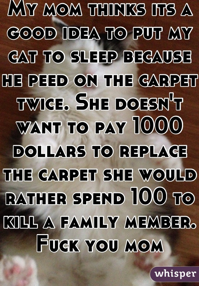 My mom thinks its a good idea to put my cat to sleep because he peed on the carpet twice. She doesn't want to pay 1000 dollars to replace the carpet she would rather spend 100 to kill a family member. Fuck you mom