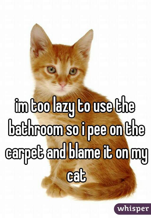 im too lazy to use the bathroom so i pee on the carpet and blame it on my cat