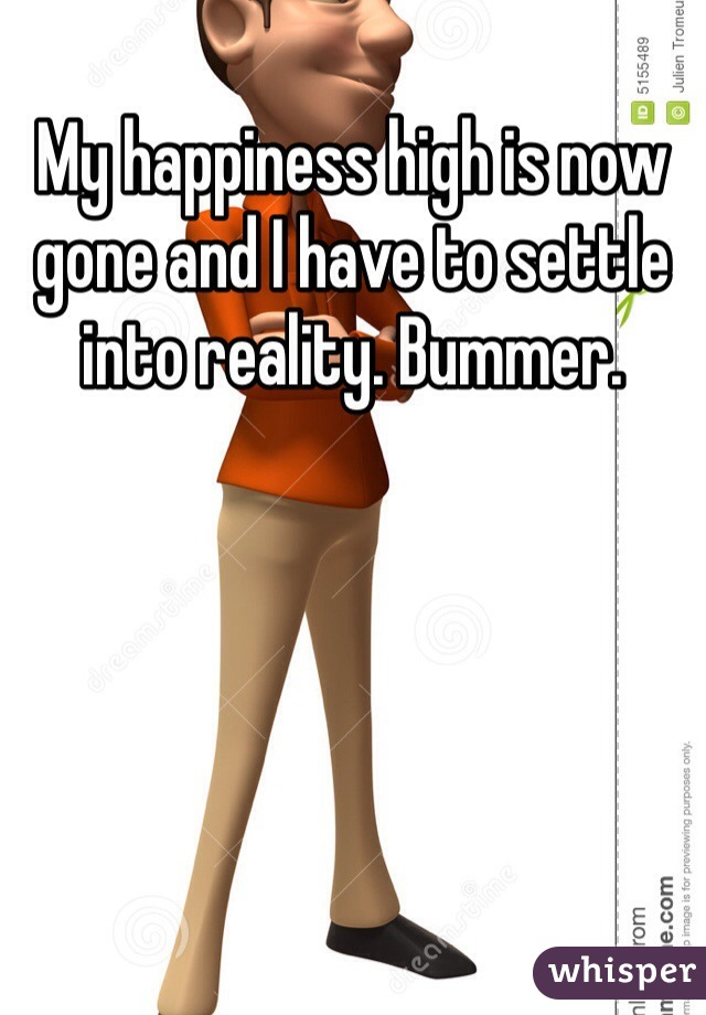My happiness high is now gone and I have to settle into reality. Bummer.