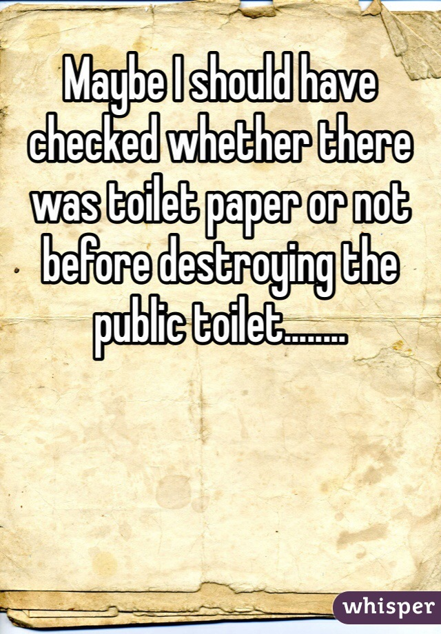 Maybe I should have checked whether there was toilet paper or not before destroying the public toilet........