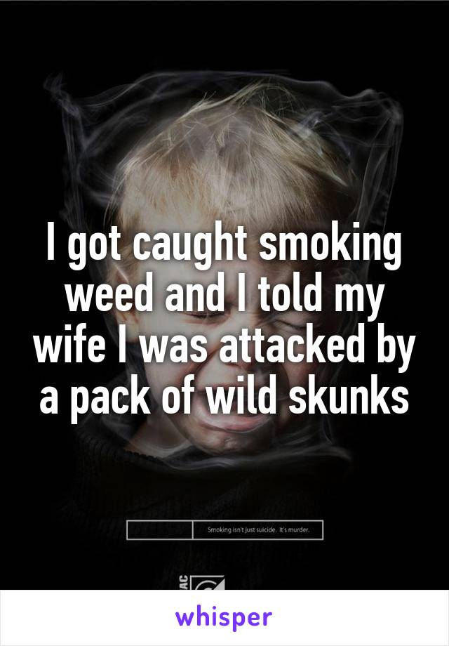 I got caught smoking weed and I told my wife I was attacked by a pack of wild skunks