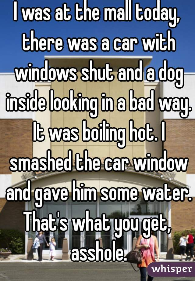 I was at the mall today, there was a car with windows shut and a dog inside looking in a bad way. It was boiling hot. I smashed the car window and gave him some water. That's what you get,  asshole.