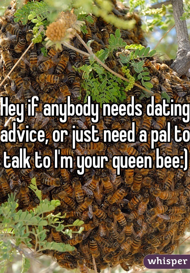 Hey if anybody needs dating advice, or just need a pal to talk to I'm your queen bee:)