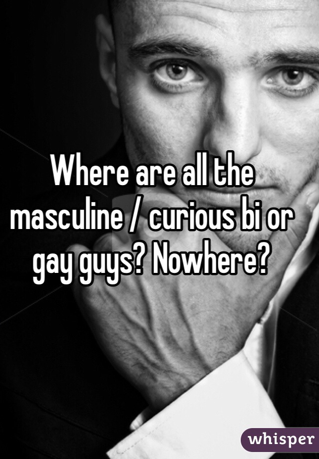 Where are all the masculine / curious bi or gay guys? Nowhere?