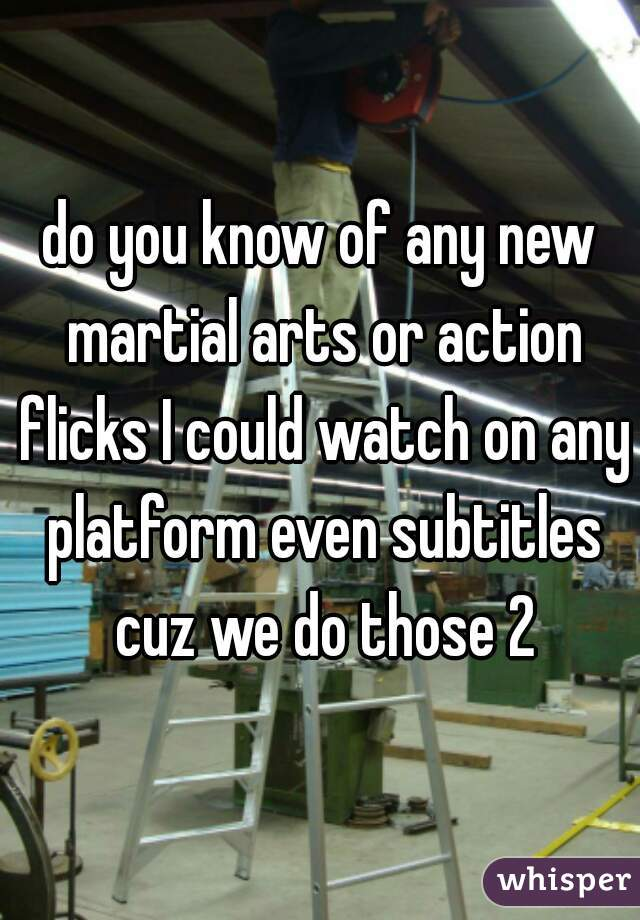 do you know of any new martial arts or action flicks I could watch on any platform even subtitles cuz we do those 2