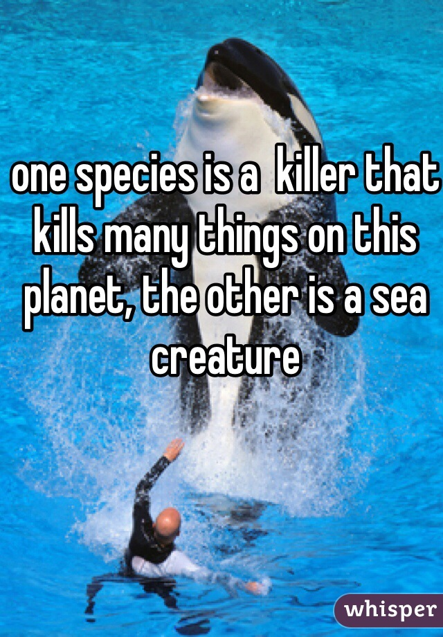 one species is a  killer that kills many things on this planet, the other is a sea creature