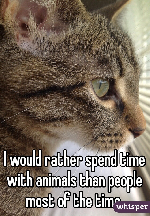 I would rather spend time with animals than people most of the time.
