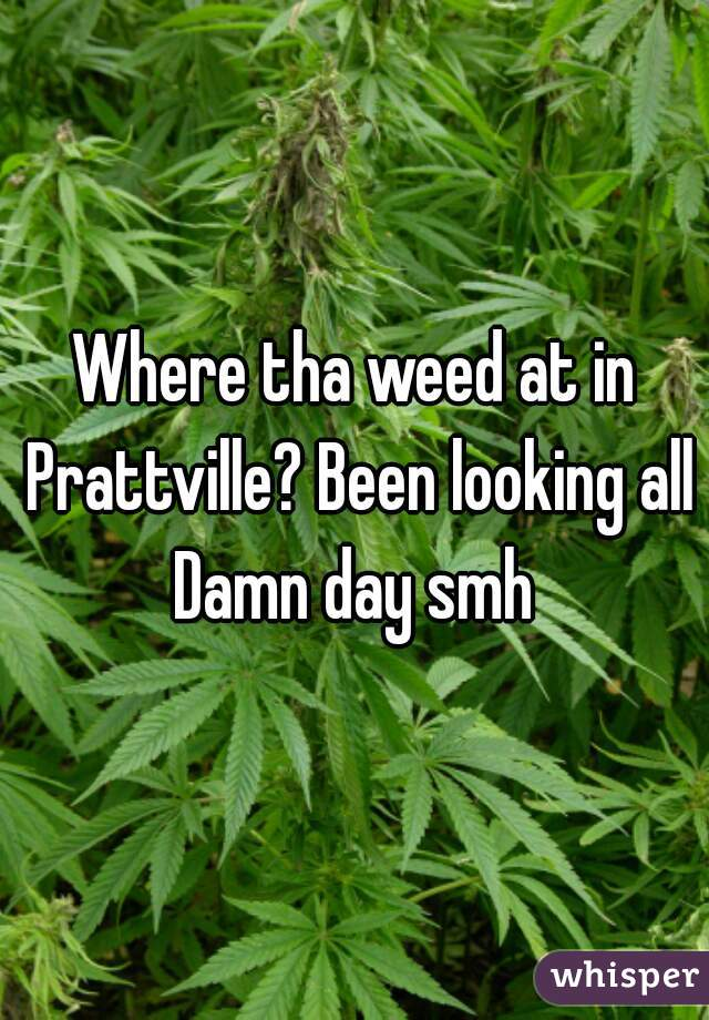 Where tha weed at in Prattville? Been looking all Damn day smh