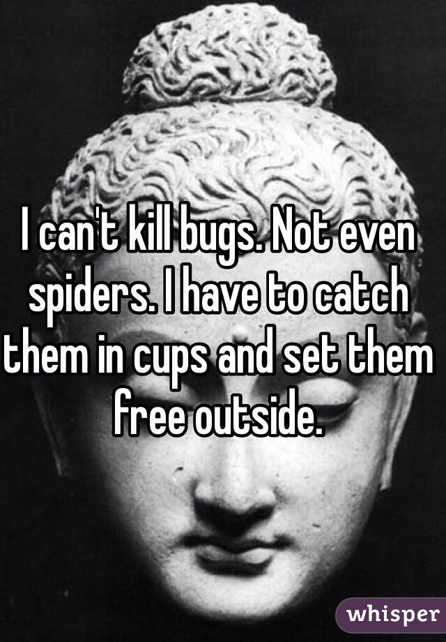 I can't kill bugs. Not even spiders. I have to catch them in cups and set them free outside.