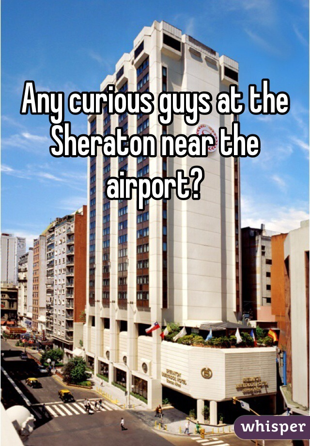 Any curious guys at the Sheraton near the airport?