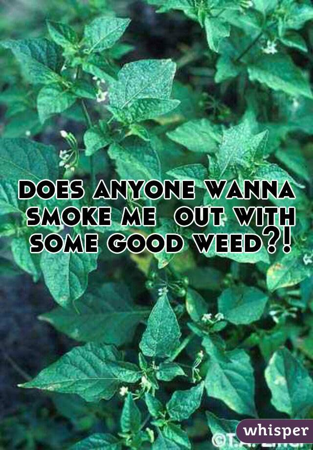 does anyone wanna smoke me  out with some good weed?!