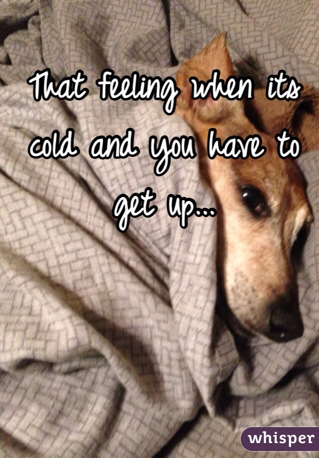 That feeling when its cold and you have to get up...