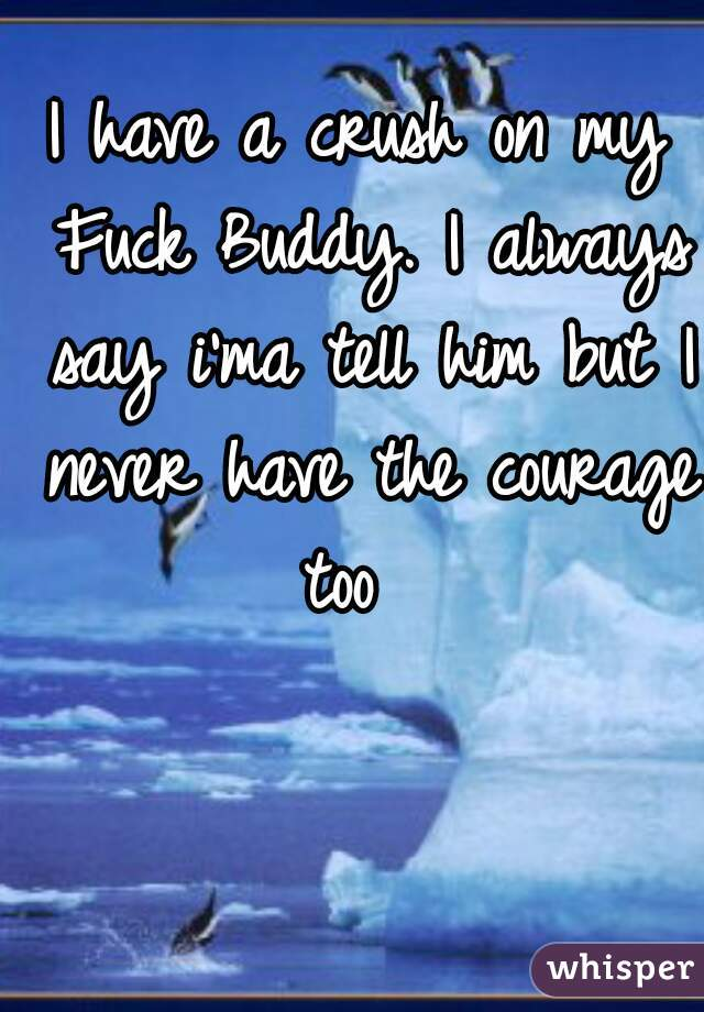 I have a crush on my Fuck Buddy. I always say i'ma tell him but I never have the courage too