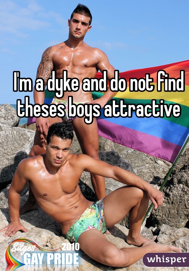 I'm a dyke and do not find theses boys attractive