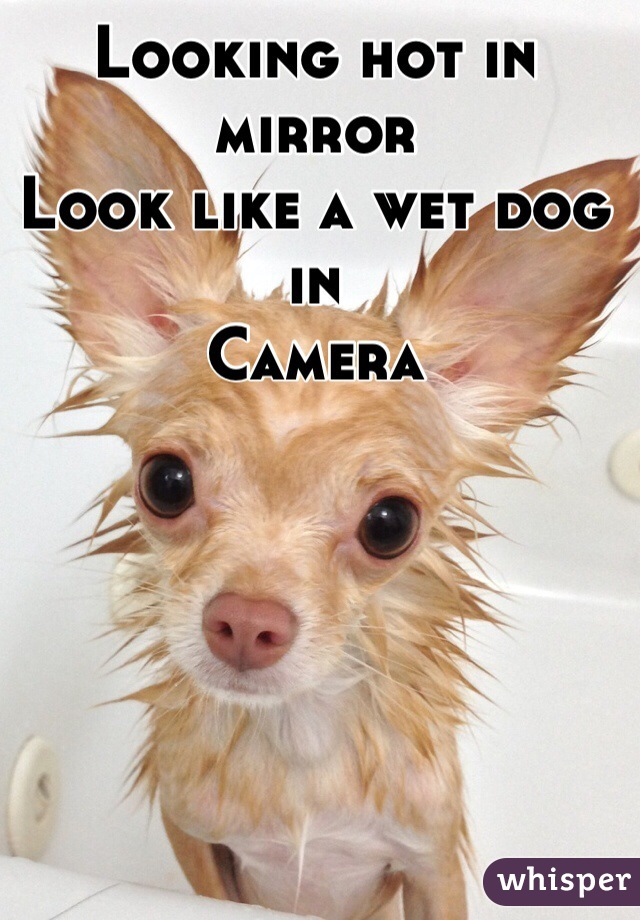 Looking hot in mirror   Look like a wet dog in  Camera