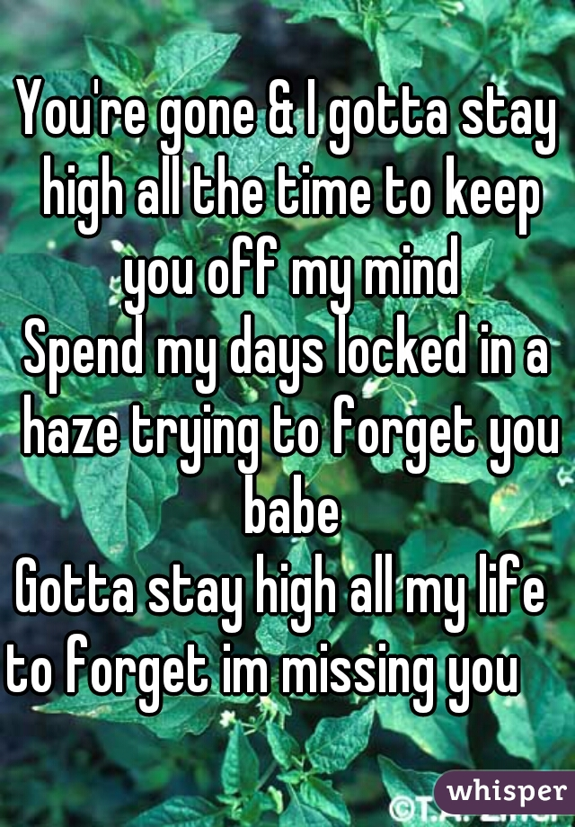 You're gone & I gotta stay high all the time to keep you off my mind Spend my days locked in a haze trying to forget you babe Gotta stay high all my life  to forget im missing you
